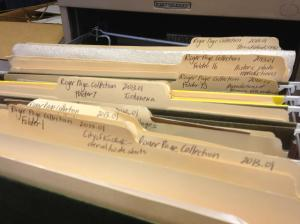 Roger page files